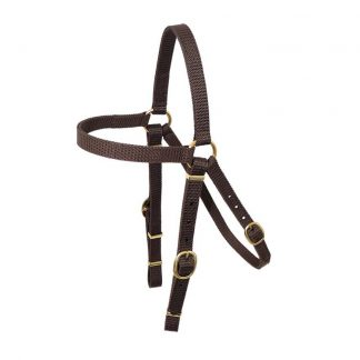 Nyla web Barcoo Bridle head - Brass