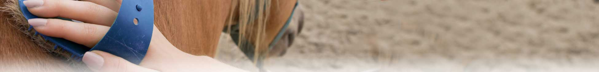 Horse Grooming Equipment