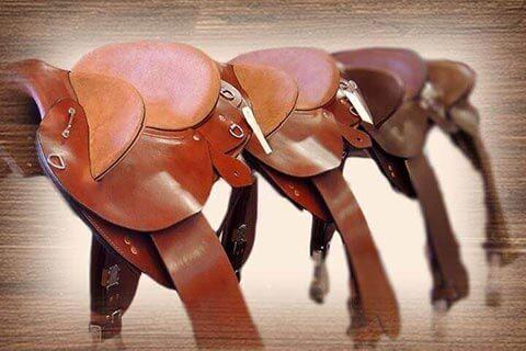Saddles category
