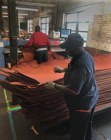 Hermann Oak employees measuring skirting leather